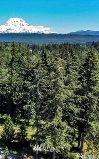 0 113th Ave E. Lot 7, Graham, WA 98338 (#1665104) :: Ben Kinney Real Estate Team
