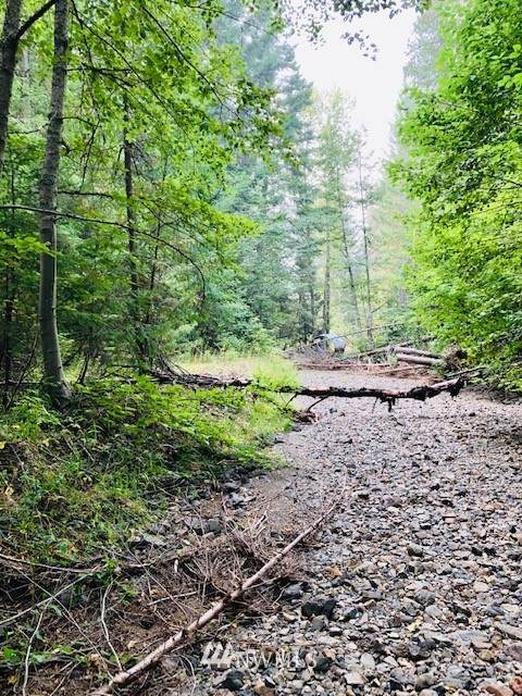 0 Silver Creek Road, Easton, WA 98925 (#1665255) :: Better Properties Lacey