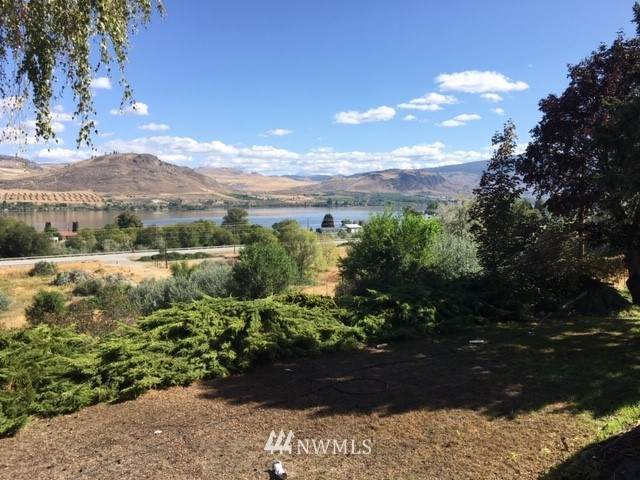 49 Shirley Road, Oroville, WA 98844 (MLS #1665778) :: Nick McLean Real Estate Group