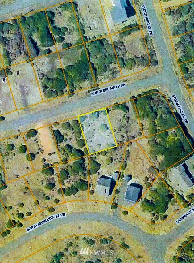 409 N Bel Air Loop, Ocean Shores, WA 98569 (#1665809) :: Northern Key Team