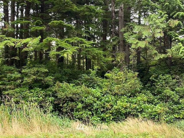 0 Lot 1 State Route 109, Copalis Beach, WA 98535 (#1666025) :: M4 Real Estate Group