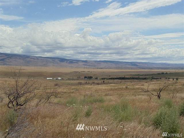 0 Ellensburg Ranches Road, Ellensburg, WA 98926 (MLS #1669809) :: Community Real Estate Group