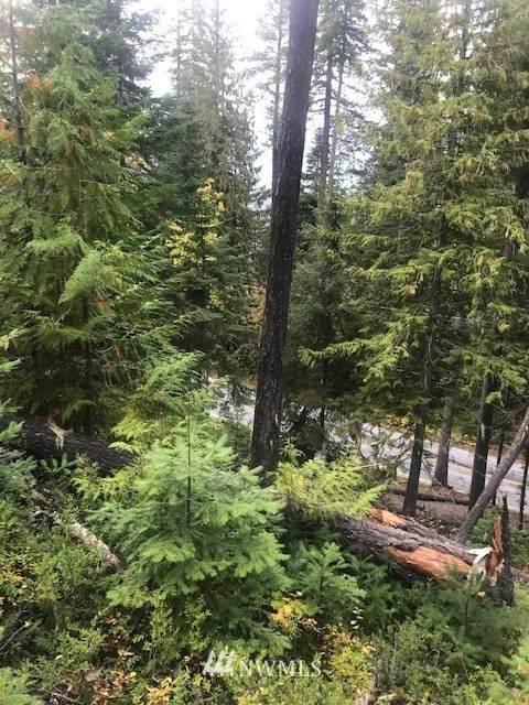 0 Cedar Brae Road, Leavenworth, WA 98826 (#1673991) :: NW Home Experts