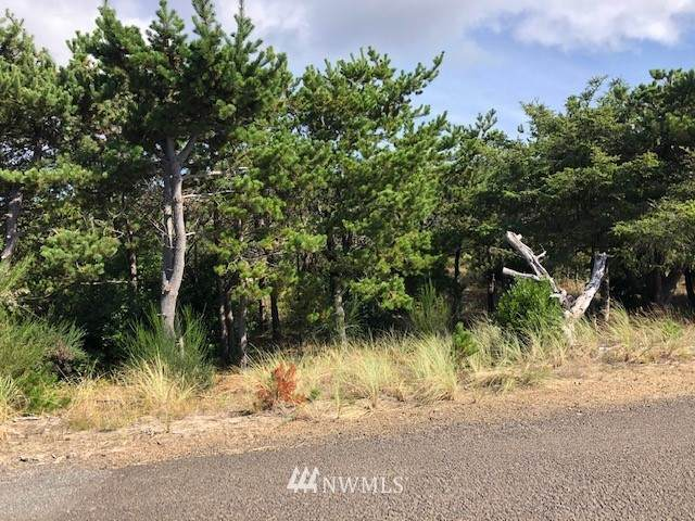 32210 H Place, Ocean Park, WA 98640 (#1675620) :: NW Home Experts