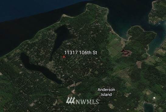 11317 106th Street, Anderson Island, WA 98303 (#1678018) :: Mike & Sandi Nelson Real Estate