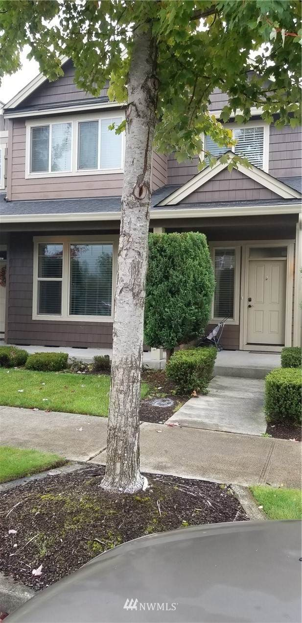 7207 Spencer Avenue NE, Lacey, WA 98516 (#1681126) :: Mike & Sandi Nelson Real Estate