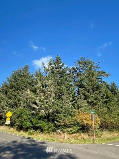 416 Duck Lake Drive SE, Ocean Shores, WA 98569 (#1681371) :: Better Properties Lacey