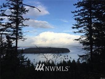 2968 Dogwood Terrace, Lummi Island, WA 98262 (#1682459) :: Keller Williams Western Realty