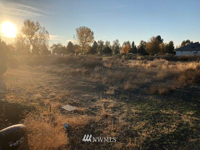 19167 NW St Andrews Dr Nw Drive NW, Soap Lake, WA 98851 (#1682799) :: Ben Kinney Real Estate Team