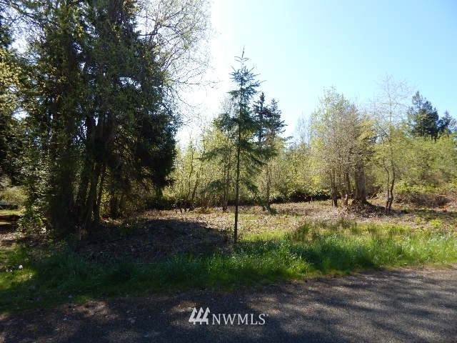 242 Ann Kivley Drive, Port Hadlock, WA 98339 (#1684985) :: The Robinett Group