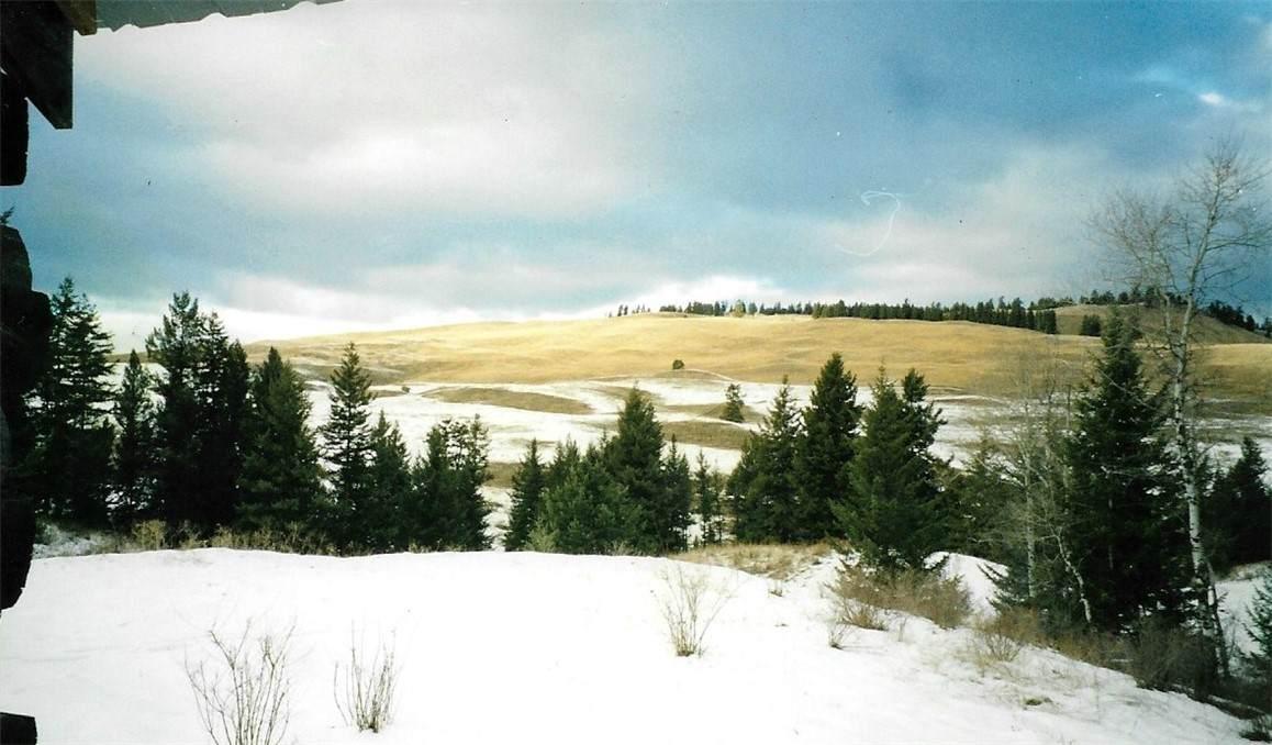 376 B Mary Ann Creek Road - Photo 1