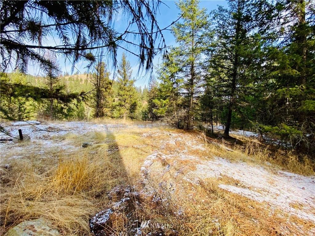 16 Pine Grove - Photo 1