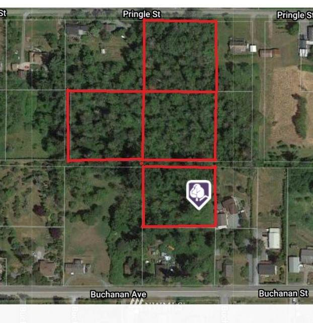 0 Pringle Street, Mount Vernon, WA 98273 (#1689747) :: Engel & Völkers Federal Way