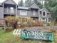 103 Timberline Dr W #103B, Packwood, WA 98361 (#1693050) :: Shook Home Group