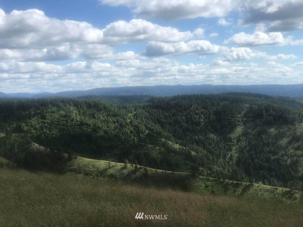 0 Blacksnake Ridge Road - Photo 1