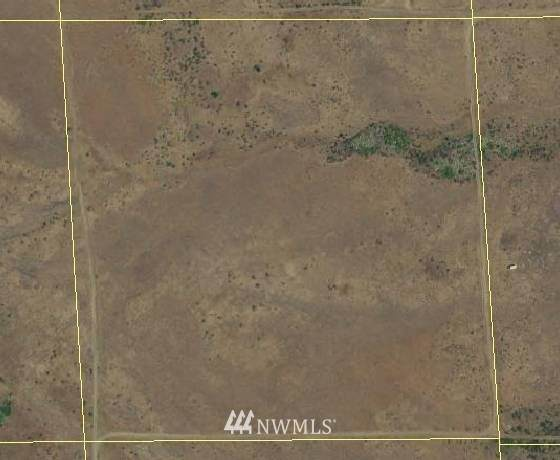 0 Cowiche Mill Road, Cowiche, WA 98923 (#1713429) :: Priority One Realty Inc.