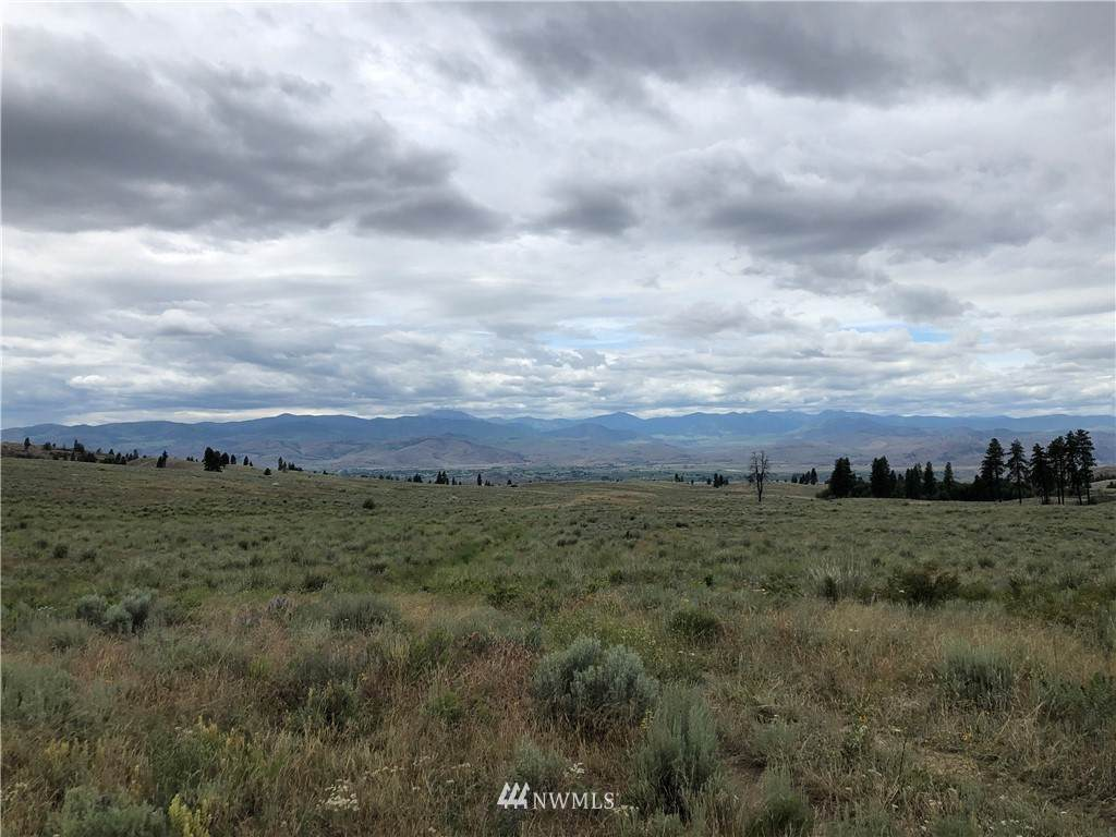 0 Omak Mountain Road - Photo 1