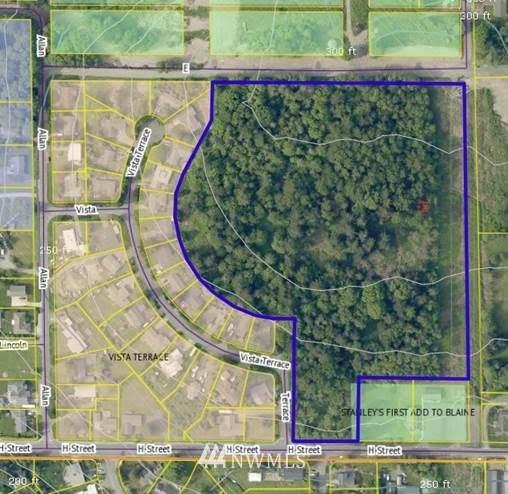 3360 H Street, Blaine, WA 98230 (#1715126) :: Better Properties Real Estate