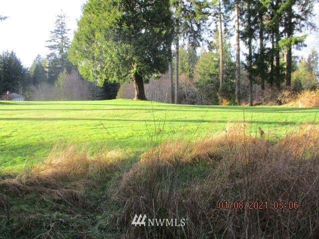 151 E Dunoon, Shelton, WA 98584 (#1715504) :: Lucas Pinto Real Estate Group
