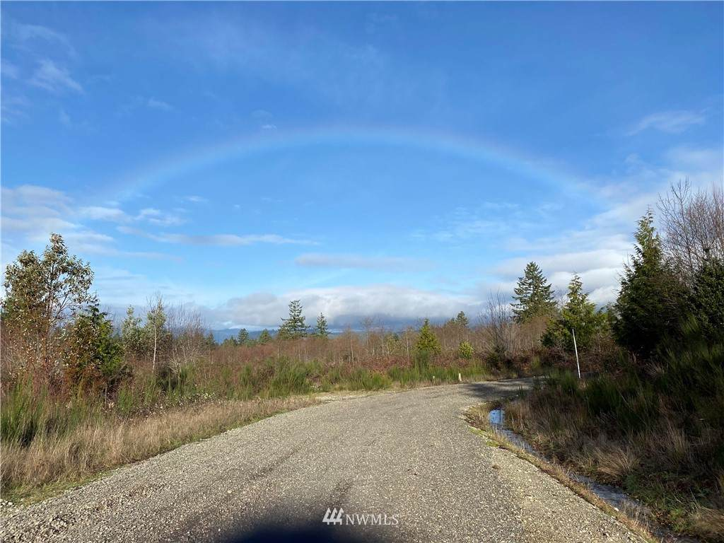 11686 Pioneer Road - Photo 1