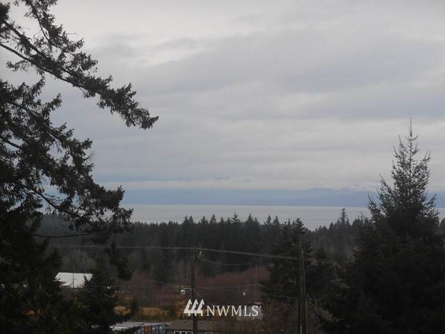 242692 Hwy 101, Port Angeles, WA 98363 (#1717425) :: My Puget Sound Homes