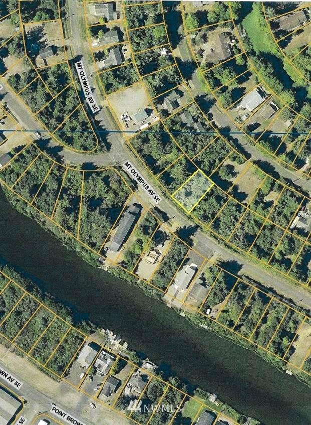 910 Mt Olympus Avenue SE, Ocean Shores, WA 98569 (#1718346) :: Ben Kinney Real Estate Team