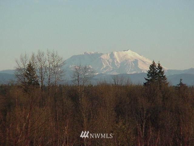 128 Volcano Lane, Napavine, WA 98565 (#1721029) :: The Shiflett Group