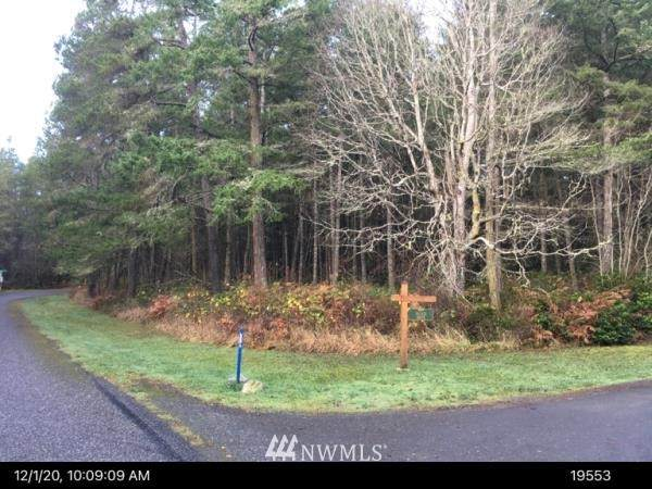 0 Petrich Road, Friday Harbor, WA 98250 (#1726263) :: Canterwood Real Estate Team