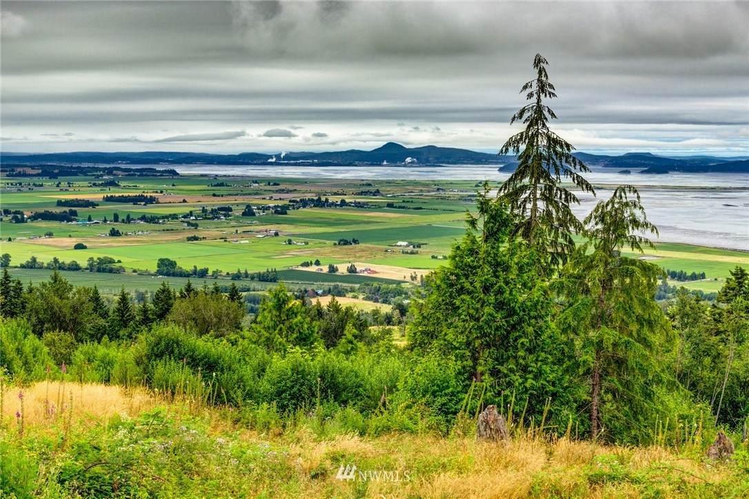 3262 Blanchard Knob Trail - Photo 1