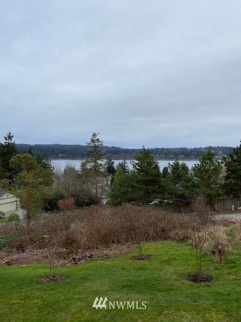 0 Lilac Drive, Freeland, WA 98249 (#1735489) :: Lucas Pinto Real Estate Group
