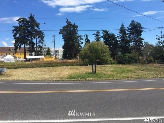 0 Birch Bay Drive, Birch Bay, WA 98230 (#1738500) :: The Snow Group