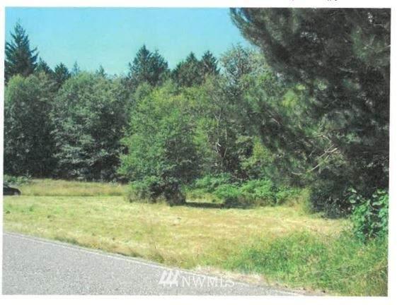 22410 Bulson Road, Mount Vernon, WA 98274 (MLS #1742079) :: Brantley Christianson Real Estate