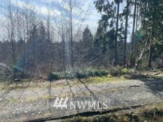88888 Oil City First Addition, Forks, WA 98331 (MLS #1743878) :: Community Real Estate Group