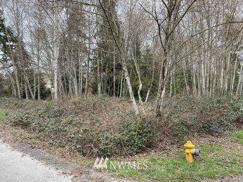 1201 S 208th (Lot A) Street, SeaTac, WA 98198 (MLS #1744070) :: Brantley Christianson Real Estate