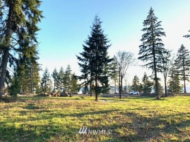 0 Olivia Lane, Kalama, WA 98625 (#1745518) :: Ben Kinney Real Estate Team