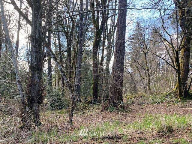 600 E Wood, Shelton, WA 98584 (#1745846) :: M4 Real Estate Group