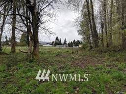 105 River Ave NE, Orting, WA 98360 (#1747162) :: Shook Home Group