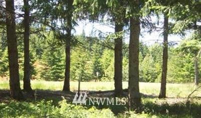 210 Gold Fountain Lane, Cle Elum, WA 98922 (#1751807) :: Ben Kinney Real Estate Team