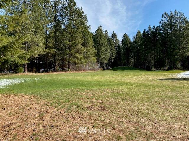 91 Solstice Drive, Cle Elum, WA 98922 (#1754480) :: NextHome South Sound