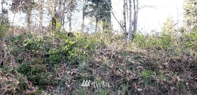 391 E Olde Lyme Road, Shelton, WA 98584 (#1755898) :: Ben Kinney Real Estate Team