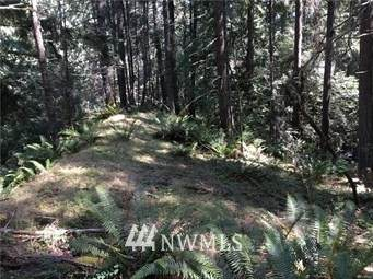 39 High Cliff Lane, Bellingham, WA 98229 (#1756867) :: The Kendra Todd Group at Keller Williams