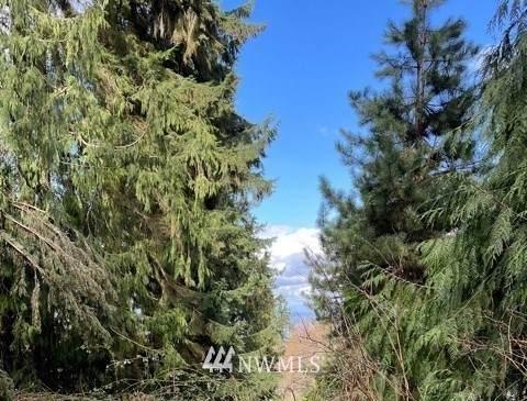 17426 SE 60th Street, Bellevue, WA 98006 (#1759539) :: Better Properties Lacey