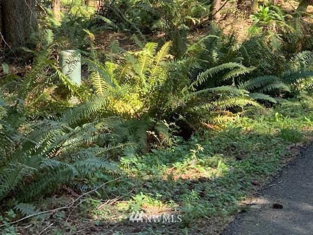 15 Wintercress Way, Bellingham, WA 98229 (#1760441) :: Engel & Völkers Federal Way