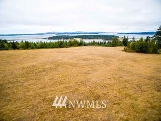 4 Dragon Run Road, Lopez Island, WA 98261 (#1763242) :: Better Homes and Gardens Real Estate McKenzie Group