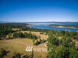 5 Dragon Run Road, Lopez Island, WA 98261 (#1763244) :: Better Homes and Gardens Real Estate McKenzie Group