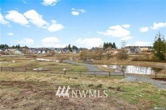 2722 Chloe Lane, Ferndale, WA 98248 (#1764034) :: Keller Williams Western Realty