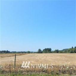 0 Lot 5 Tauscher Road, Chehalis, WA 98532 (#1764564) :: Front Street Realty