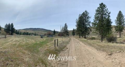 48 Haley Creek Road, Omak, WA 98841 (#1764997) :: Better Properties Lacey