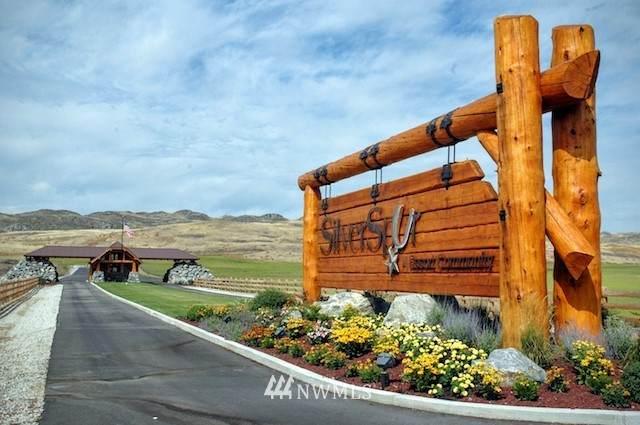 0 Cool Meadow Lot 21 Lane, Brewster, WA 98812 (#1766422) :: Northwest Home Team Realty, LLC