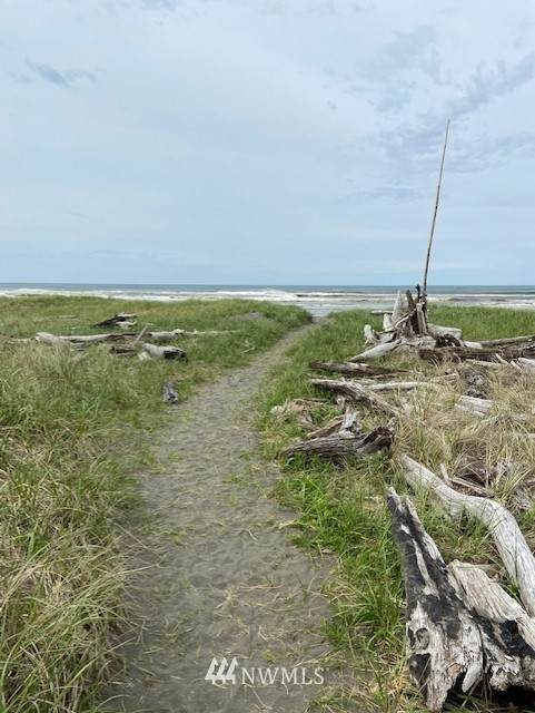 523 Marine View Drive SW, Ocean Shores, WA 98569 (#1770954) :: NextHome South Sound